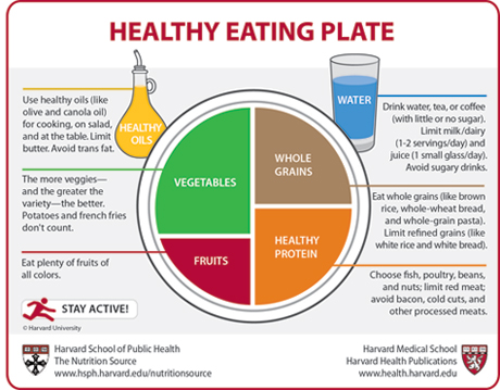 healthy eating plate 460